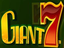 Гигант 7